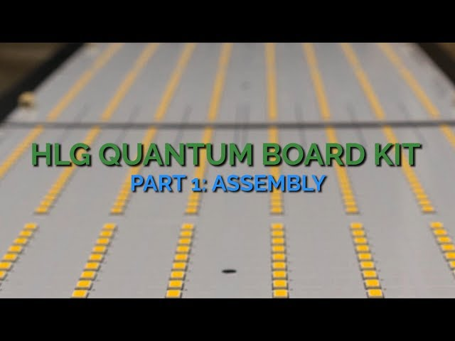 What Do You Think About This Light Setup? Quantum Board | THCFarmer